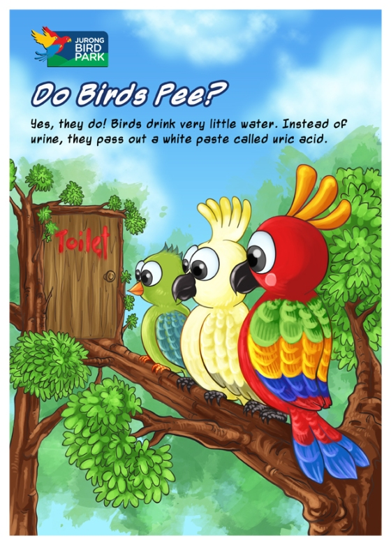 Cartoon Illustration Painting - Do Birds Pee