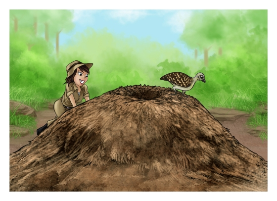 Cartoon Painting Illustration - Mallee Fowl Nest