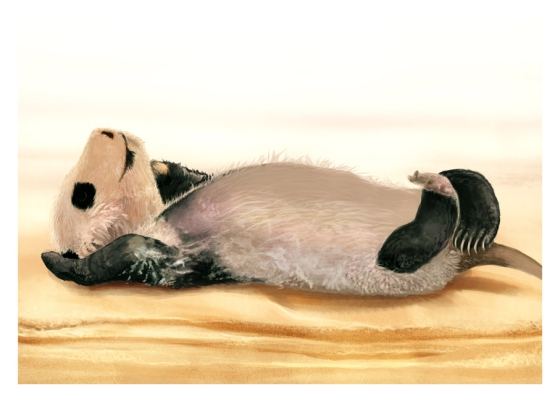 Baby Panda Painting Illustration - Stage 2