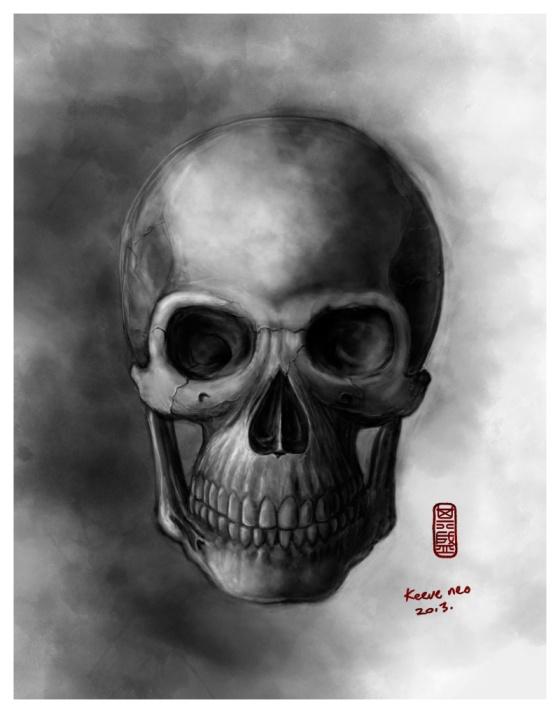 Skull-study